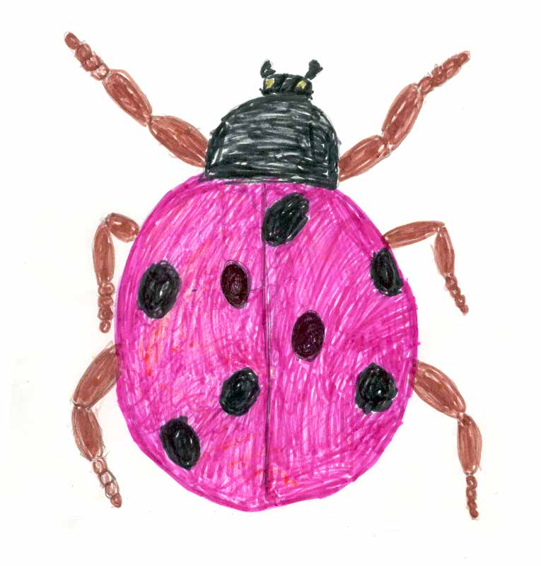фото рисунков детей