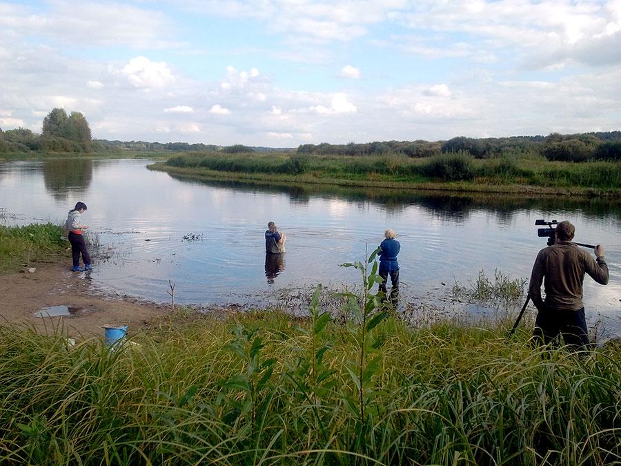 Рыбалка в толмачево на реке луга